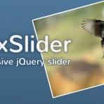 FlexSlider - Responsive jquery slider