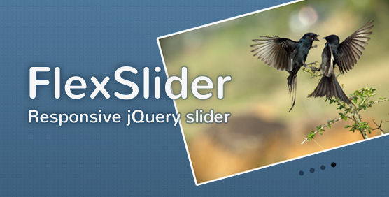FlexSlider - Responsive jquery slider