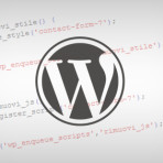Come disabilitare css e javascript dei plugin WordPress